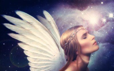 ANGEL ZAUPANJA